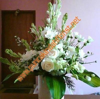 Contoh Gambar Bunga Sedap Malam Seo Terjun